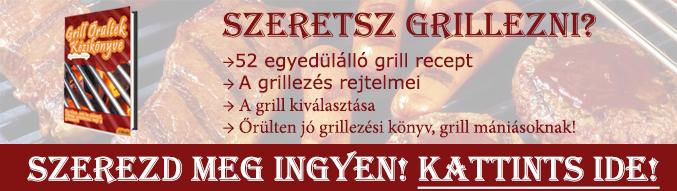 Grill őrültek kézikönyve - elektromos grill